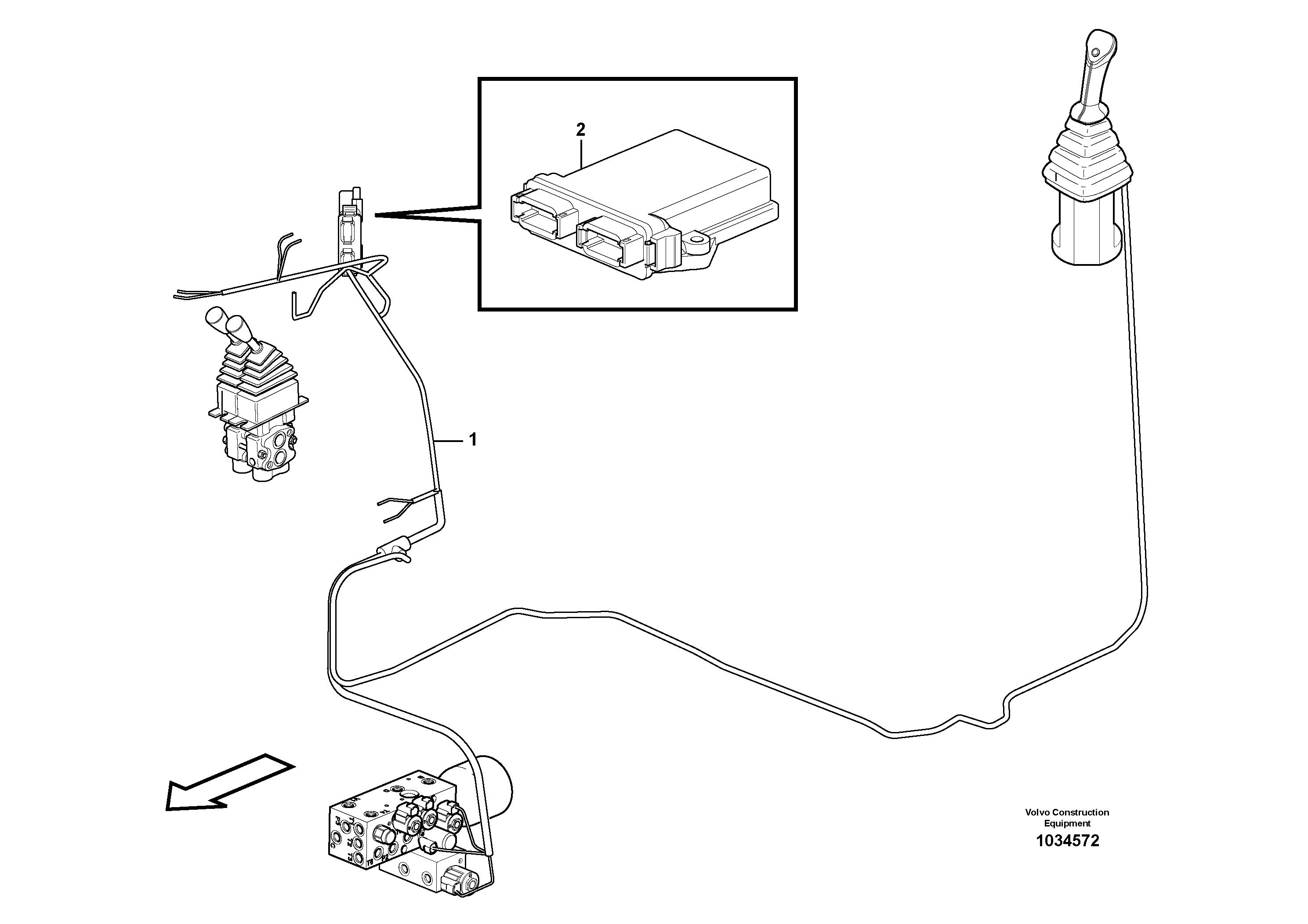 bekoloder-Beyin